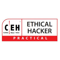 CEH (Certified Ethical Hacker)